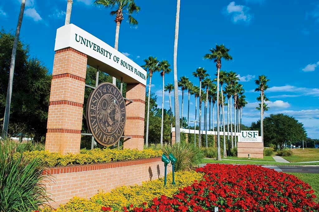 USF Bridge to Doctorate Program – Find Out More!